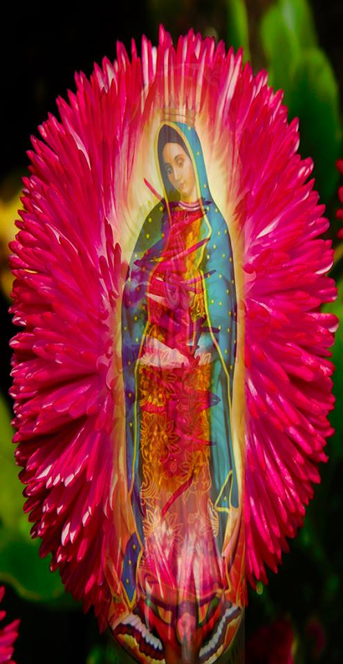 Prayer to Guadalupe